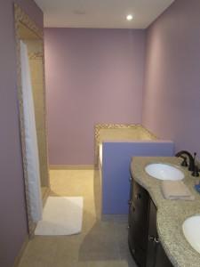Glenmore basement bathroom renovation / Skyrim Construction